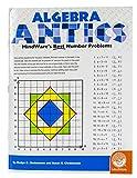 Mindware Algebra Antics (Workbook)