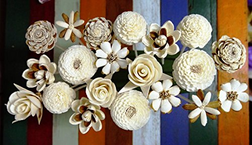 Price comparison product image 20 Balsa Wood Sola Diffuser Flowers with 7.5in. Rattan Reeds,  mix of Jasmine,  Rose,  Zinnia,  Lotus,  Dianthus,  Rangoon-Creeper