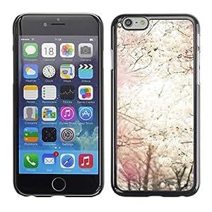 FECELL CITY // Duro Aluminio Pegatina PC Caso decorativo Funda Carcasa de Protección para Apple Iphone 6 // Sun Spring Blossom Trees Cherry Nature
