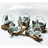 MyGift Small Natural Driftwood & Clear Molten Glass