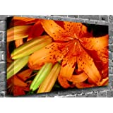 "Orange Calla Lily Flower Canvas Art Canvas Print Picture print Size: (60"" x 40"")"