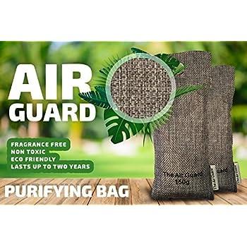 Amazon Com Airguard Reusable Odor And Moisture Filter