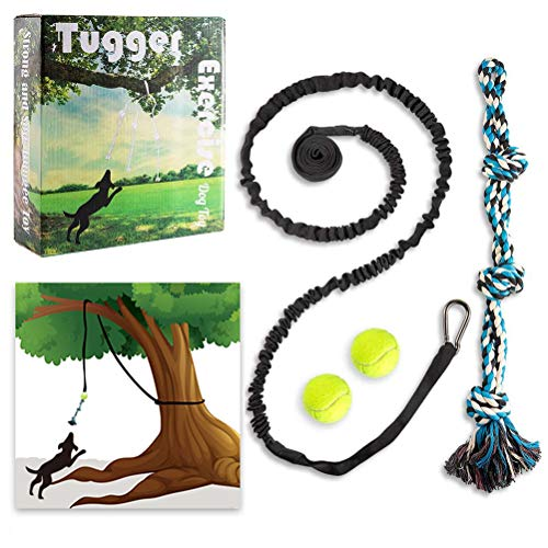 PUPTECK Tugger Rope Dog Toy – Outdoor Exercise Dog Toys with 8ft Hanging Bungee Rope and Tennis Ball for Medium, Large…