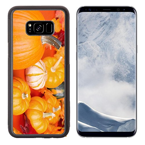 Luxlady Samsung Galaxy S8 Plus S8+ Aluminum Backplate Bumper Snap Case IMAGE ID: 32520065 Pumpkin closeup with other gourds and colorful leaves in background (Arrangement Season Festive)