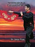 Tai Chi Kung Fu Fan II (Beauty of the Sunset)