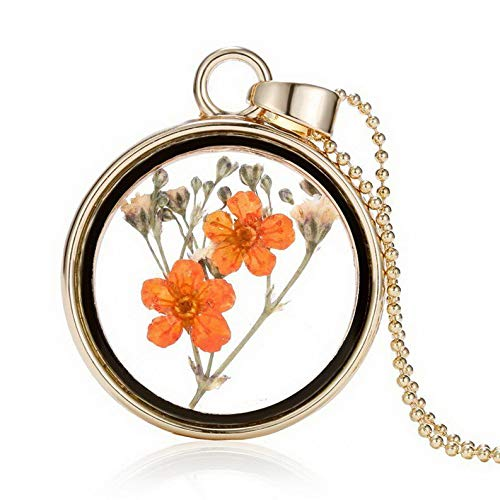 Kaputar Fashion Heart Dried Flower Glass Bottle Pendant Necklace Woman Party Jewelry New | Model NCKLCS - 18142 |