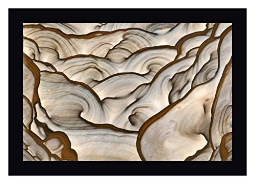 (Oregon, Biggs Close-up of Picture Jasper Stone by Dennis Kirkland - 11