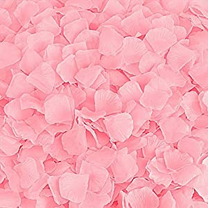 BESKIT 3000 Pieces Silk Rose Petals Artificial Flower Petals for Wedding Confetti Flower Girl Bridal Shower Hotel Home Party Valentine Day Flower Decoration (Pink) 111
