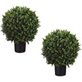 "Set of 2 - Pre-Potted 24"" High Ball Shaped Boxwood Topiary- 16"" Diameter - Plastic Pot"