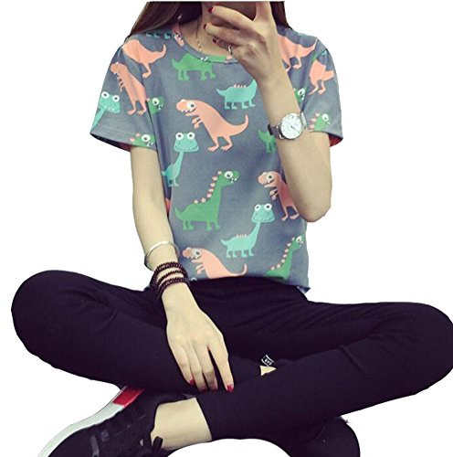 Japanese Fashion Clothing - Women Summer Japanese Harajuku Animal Dinosaur Printing T-shirt, Grey, X-Large