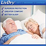 LivDry Adult M Incontinence Underwear, Overnight