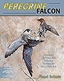Peregrine Falcon, Floyd Scholz, 0811714063