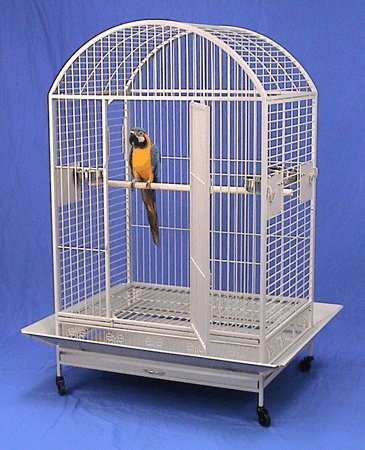 XX Large DomeTop Wrought Iron Bird Parrot Cage, 40
