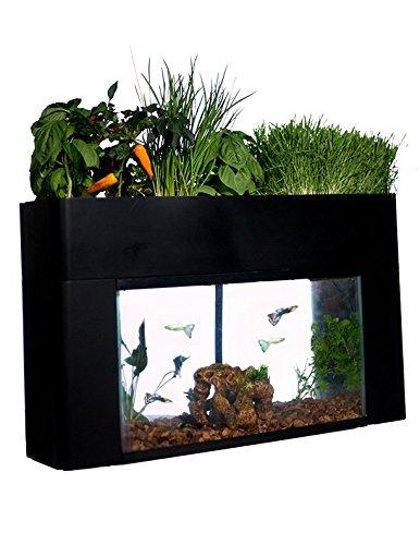 best self-cleaning aquarium