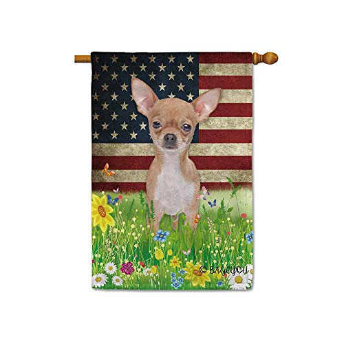BAGEYOU Cute Puppy Chihuahua House Flag Lovely Pet Dog American US Flag Wildflowers Floral Grass Spring Summer Decorative Patriotic Banner for Outside 28x40 inch Printed Double Sided