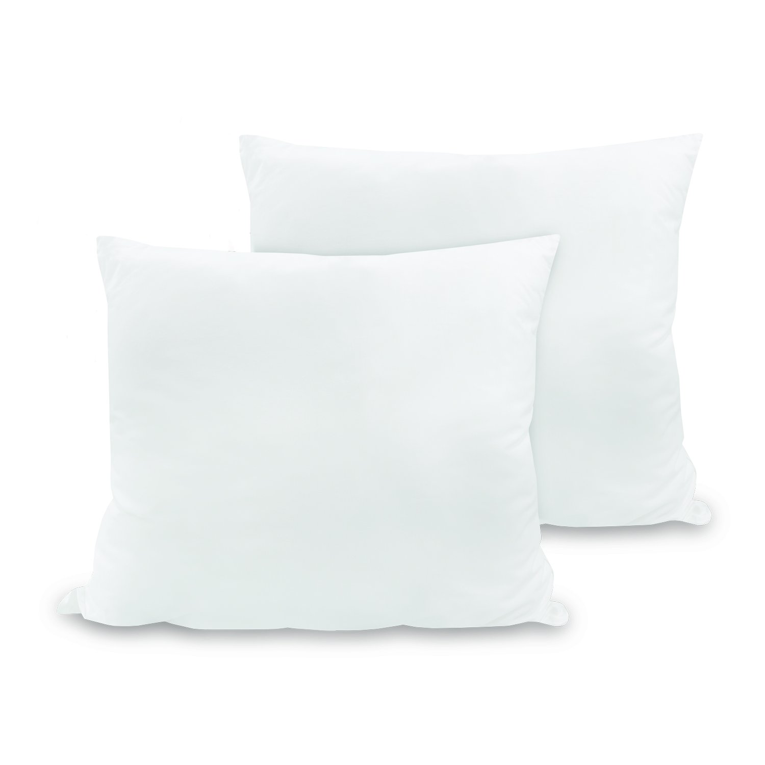 BioPedic Luxurious 28-by-28 Inch Euro Square Pillows, 2-Pack by BioPEDIC