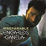 Irreparable (Album Version)