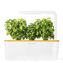 Indoor Garden Kits