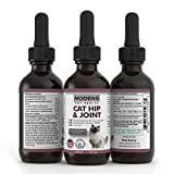 NODENS® - Pet Health CAT Hip and Joint Glucosamine for Cats with Chondroitin and Opti-MSM Hyaluronic Acid for Improved Joint Flexibility and Pain Relief from Inflammation and Arthritis 2 floz