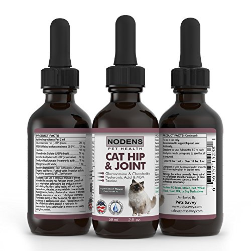 Cat Joint Health Supplement - NODENS CAT Hip and Joint Glucosamine for Cats with Chondroitin and Opti-MSM Hyaluronic Acid for Improved Joint Flexibility and Pain Relief from Inflammation and Arthritis 2 floz