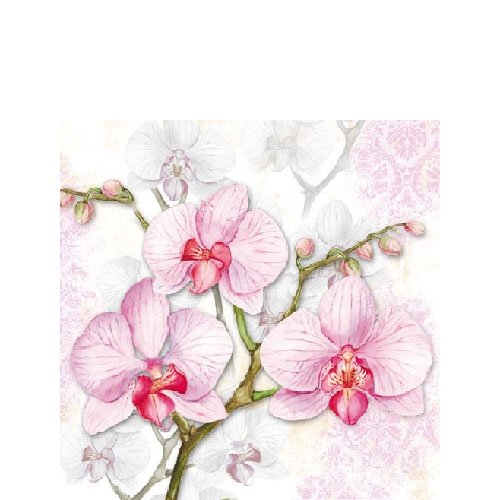 4 Paper Napkins for Decoupage - 3-ply, 33 x 33cm - Orchids Tigers on the Loose
