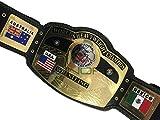 NWA Domed Globe World Heavyweight Wrestling