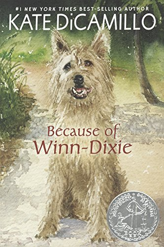 Book cover for Because of Winn Dixie