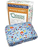 Designer Weighted Blanket for kids (or adult) | Dozens of cute styles in many sizes | Gravity blankets may help relieve anxiety, stress & insomnia | Style - Alice in Wonderland - 6 lbs