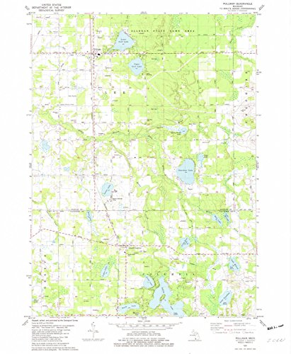 YellowMaps Pullman MI topo map, 1:24000 Scale, 7.5 X 7.5 Minute, Historical, 1981, Updated 1982, 26.6 x 21.9 in - Paper