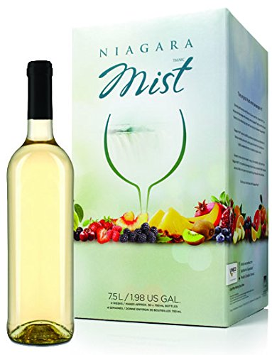 Melon Berry Fruit Wine Kit Niagara Mist Retail Box