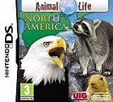 Animal Life - Nordamerika