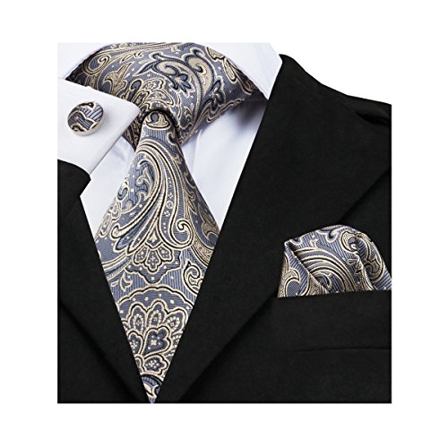 Barry.Wang Men's Tie Grey Silk Ties Pocket Square Cufflinks (Paisley Tie)