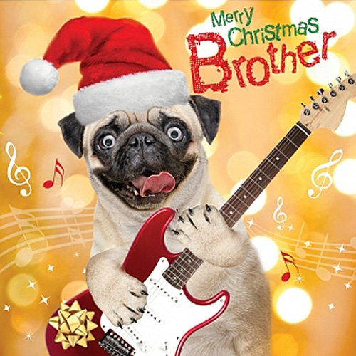 Pug Dog With Guitar Single Xmas Card