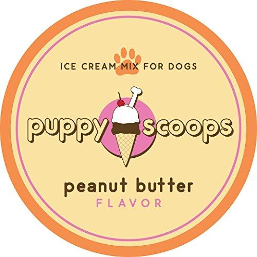 Buy ice cream scoop ever