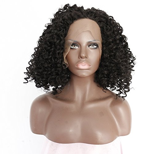 Ebingoo Handmade Synthetic Lace Front Wig Popular Curly Wigs for African American Women Black Heat Resistant Hair (18inches)