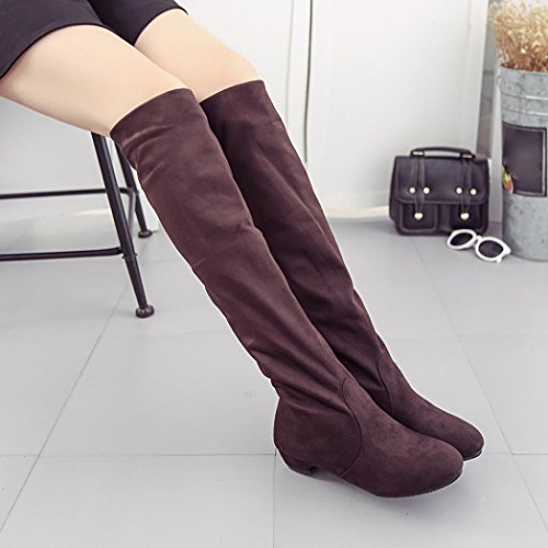 Femmes Bottes Chaussures Plates Cavalières Bottes Longues Marron Hiver Igemy Automne 1wdpxHwq