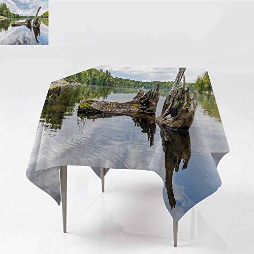 Acelik Resistant Table Cover,Driftwood Remains of a White Cedar Tree Trunk in The Lake and The Sky Digital Image,High-end Durable Creative Home,70x70 Inch,Green Pale Grey ()