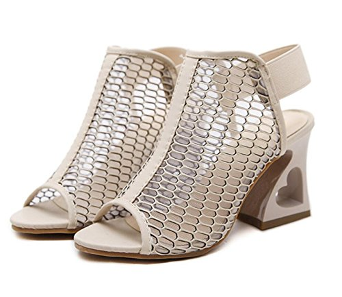 LINYI Women's Sandals 2018 Summer New Heart-Shaped With Thick Heels Mesh Chunky Heel apricot f0BIc5X
