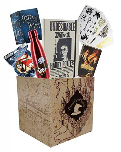 Toynk Harry Potter Collectibles | LookSee Collectors Box | Collector