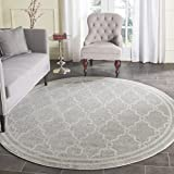 Safavieh Amherst Collection AMT414B Light Grey and Ivory Indoor/Outdoor Round Area Rug (9′ Diameter)