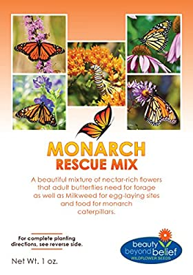 Monarch Rescue Wildflower Seeds Bulk + 7 BONUS Gardening eBooks + Open-Pollinated Wildflower Seed Packets, Non-GMO, No Fillers, Annual, Perennial Milkweed Seeds for Monarch Butterfly