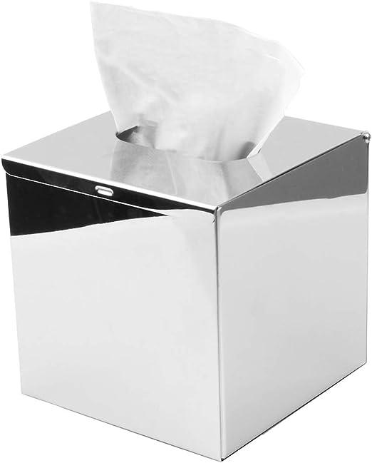 HSTYAIG: Soporte de Acero Inoxidable para Caja de pañuelos de ...