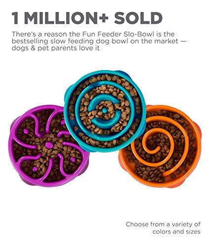 Outward Hound Fun Feeder Dog Bowl Slow Feeder Stop Bloat for Dogs, Medium/mini, Purple