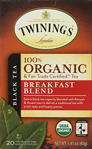 lend Organic Tea, 20-Count Tea Bags (Pack of 6 ) (Organic Fair Trade Iced Tea)