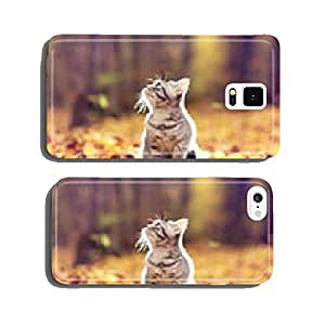 British kitten in autumn park, fallen leaves cell phone cover case Samsung S6