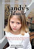 Sandy's Miracle, Patsy Giddings and John Borgstedt, 1481706101