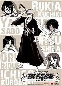 Great Eastern Entertainment Bleach Ichigo, Orihimi, Sado, Uryu, Rukia, Kisuke Wall Scroll, 33 by 44-Inch