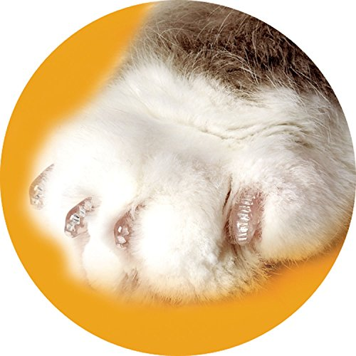Soft Claws for Cats - CLS (Cleat Lock System) - Size Medium - Color Clear