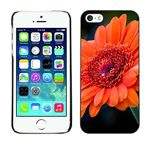 Premio Sottile Slim Cassa Custodia Case Cover Shell // F00020800 Tangerine fleur // Apple iPhone 5 5S 5G