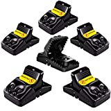 ABC Pest Control Snap Mouse Rat Traps That Work Indoor Plastic Reusable Humane Rodent Trap Easy Set 6 Pack